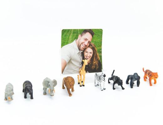 Photojojo's Magnetic Photo Holders - Snaps: A Blog from SnapBox